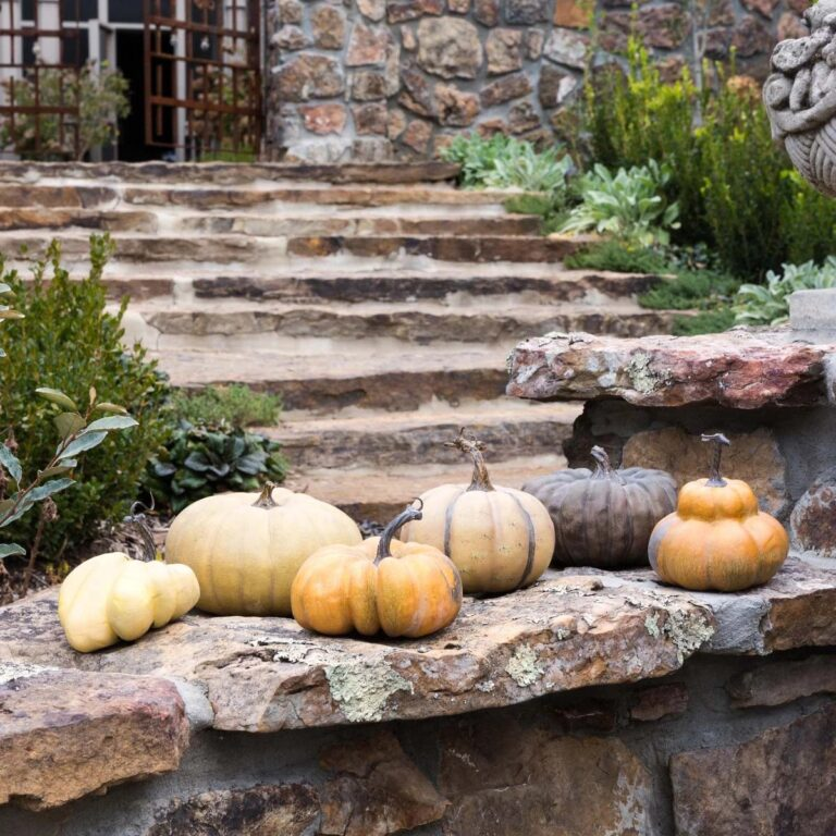 fall home decor items